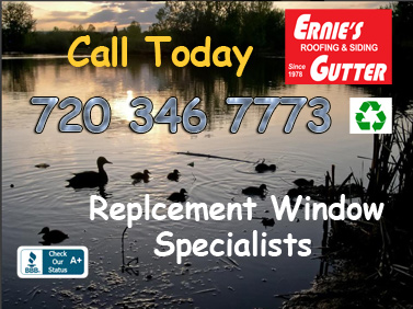 Roof Siding Rain Gutters and Replacement Windows